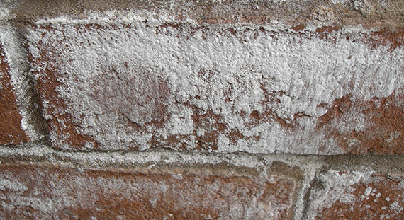 salpetre mur exterieur pas cher